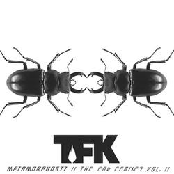 Metamorphosiz II - The End Remixes Vol. 2