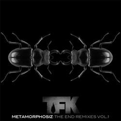 Metamorphosiz - The End Remixes Vol. 1