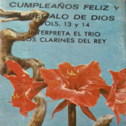Vol. 13 - Cumpleaños Feliz