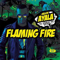 Melvin Ayala - Flaming Fire